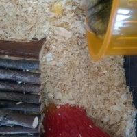 Photo taken at Pet Product by Irina 🐭 B. on 8/7/2014
