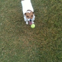 Photo taken at Camp Barkeley Dog Park by honeybaby42 . on 10/10/2012