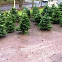 Photo taken at Cork Christmas Trees by Cork Christmas Trees on 7/28/2017