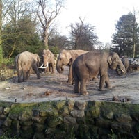 Photo taken at Dierenpark Emmen by Dennis A. on 12/29/2012