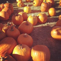 Photo taken at Curtis Orchard & Pumpkin Patch by Arianne J. on 9/26/2013