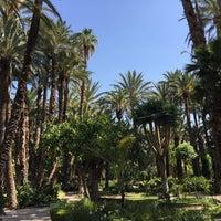 Photo taken at Hotel Huerto del Cura by Ingo B. on 5/30/2015