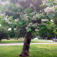 Photo taken at Centennial Park by Emily A. on 6/1/2013