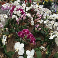 Photo taken at The Home Depot by Rosemary P. on 5/7/2016