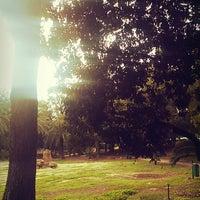 11/10/2014 tarihinde Wajdi M.ziyaretçi tarafından Parc du Belvédère'de çekilen fotoğraf