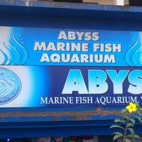 Abyss Marine Aquarium Best Aquarium 2018