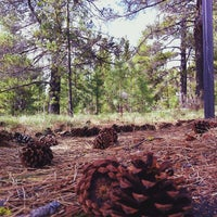 Photo taken at City of Sunriver by Merlina M. on 5/2/2014