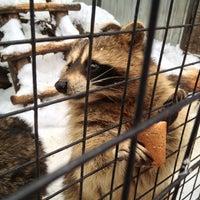 Das Foto wurde bei Зоопарк «Лимпопо» von Ta S. am 1/5/2013 aufgenommen