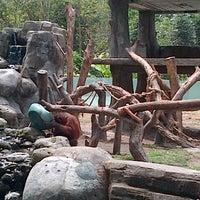 Photo taken at Kebun Binatang Gembira Loka by ferianto w. on 9/22/2012