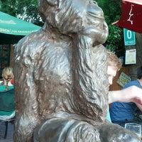 Photo taken at Three Monkeys Café by Rachel L. on 6/2/2013