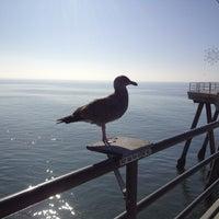 Photo taken at Huntington Beach Pier by stephanie on 12/10/2012