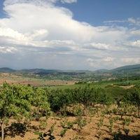Photo taken at Ereroğulları çiftliği by Fatih K. on 5/4/2013