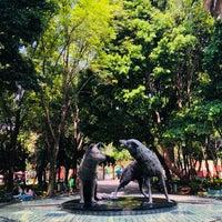 Foto tomada en Centro Histórico de Coyoacán por E P. el 4/25/2018