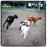 Photo taken at Talley Day Bark Park by Michael F. on 9/8/2013