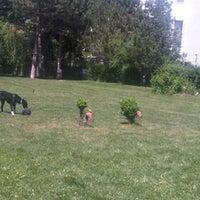 Photo taken at Kopek Plaji + Kahve Yerimiz by  Ozlem Y. on 5/25/2013