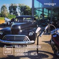 harley davidson versilia - 5 visitors
