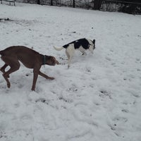 Photo taken at Talley Day Bark Park by Licinia K. on 12/14/2013