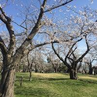 Photo taken at 青葉ヶ丘公園 by michiko o. on 5/3/2017