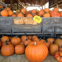 Photo taken at Apple Annie's Pumpkins And Produce by Priscilla W. on 10/13/2013