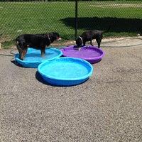 Photo taken at Churchill Field Dog Park by Natalie G. on 6/8/2013