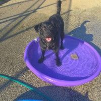 Photo taken at Churchill Field Dog Park by Natalie G. on 6/15/2016