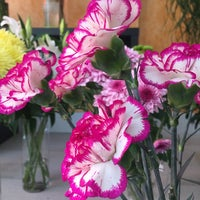Photo taken at domingo arte floral by ReCOOLez on 10/1/2014