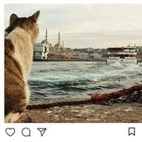 7/2/2018 tarihinde Metin K.ziyaretçi tarafından Humusçu Nedim Usta'nın Yeri'de çekilen fotoğraf