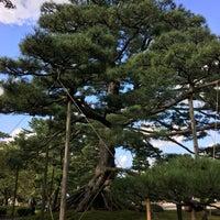 Photo taken at Neagarinomatsu Pine by Teddy on 9/18/2017