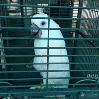 Photo taken at Premier Pet Hospital by Tookta T. on 1/19/2015