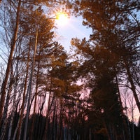 Photo prise au Парк культуры и отдыха им. 30-летия ВЛКСМ par Tatyana U. le4/3/2013