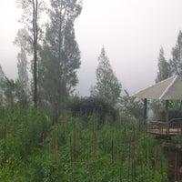 Foto scattata a Istana Petani Homestay da Istana Petani Homestay il 8/16/2014