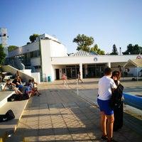 Photo taken at Nicosia Munincipal Swimming Pool by George H. on 9/12/2017