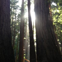 Photo taken at Muir Woods National Monument by Tracey H. on 3/3/2013