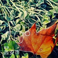 Photo taken at 木塔寺公园 by duzifeiben 独. on 12/2/2013