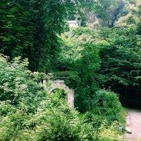 Photo taken at Parco Villa Duchessa di Galliera by Анна Д. on 6/20/2014