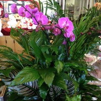 Photo taken at Flowers By Sophia by Michael F. on 2/14/2013