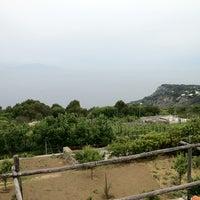 Photo taken at Da Gelsomina alla Migliara by Yasuyuki K. on 5/20/2012