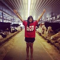 Photo taken at Arethusa Farm by Rani R. on 8/12/2013