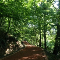 Photo taken at Belgrad Ormanı by Perihan T. on 5/26/2013