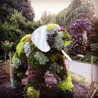 Photo prise au Queen Mary's Gardens par Nastya D. le6/30/2013