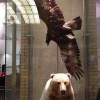 Photo taken at Royal Ontario Museum by Luiz Guilherme C. on 2/8/2013