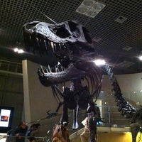 Photo prise au National Museum of Nature and Science par Shigeki I. le2/24/2013