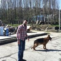 Photo taken at Ceylan Tekstil Apre ve Boya Tic Ltd Şti by Hasan👼😘 on 3/12/2013