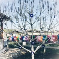 4/22/2018 tarihinde Bilgeziyaretçi tarafından Olimpos At Çiftliği'de çekilen fotoğraf