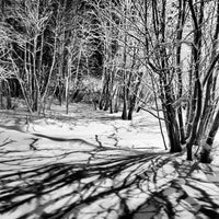 Photo taken at Улица Чумбарова-Лучинского by Andrey P. on 12/21/2013