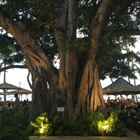 Photo taken at Moana Surfrider, A Westin Resort & Spa, Waikiki Beach by Ashley H. on 3/19/2013