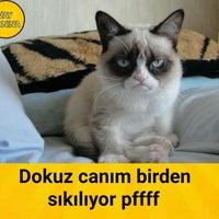 Photo taken at Britishline Dil Okulları by Aynel A. on 2/19/2016