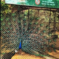 Photo taken at Nandankanan Zoological Park by Arjan Singh M. on 4/24/2014