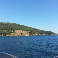 7/24/2013 tarihinde Betty Ç.ziyaretçi tarafından Kalpazankaya Plajı'de çekilen fotoğraf