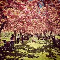 Photo taken at Brooklyn Botanic Garden by John d. on 5/4/2013